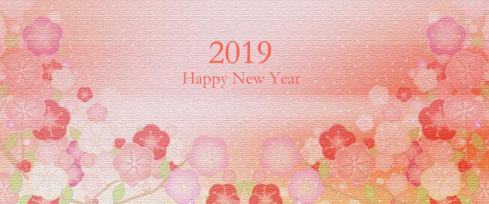 2019年おめでとうございます(シン・セシア)