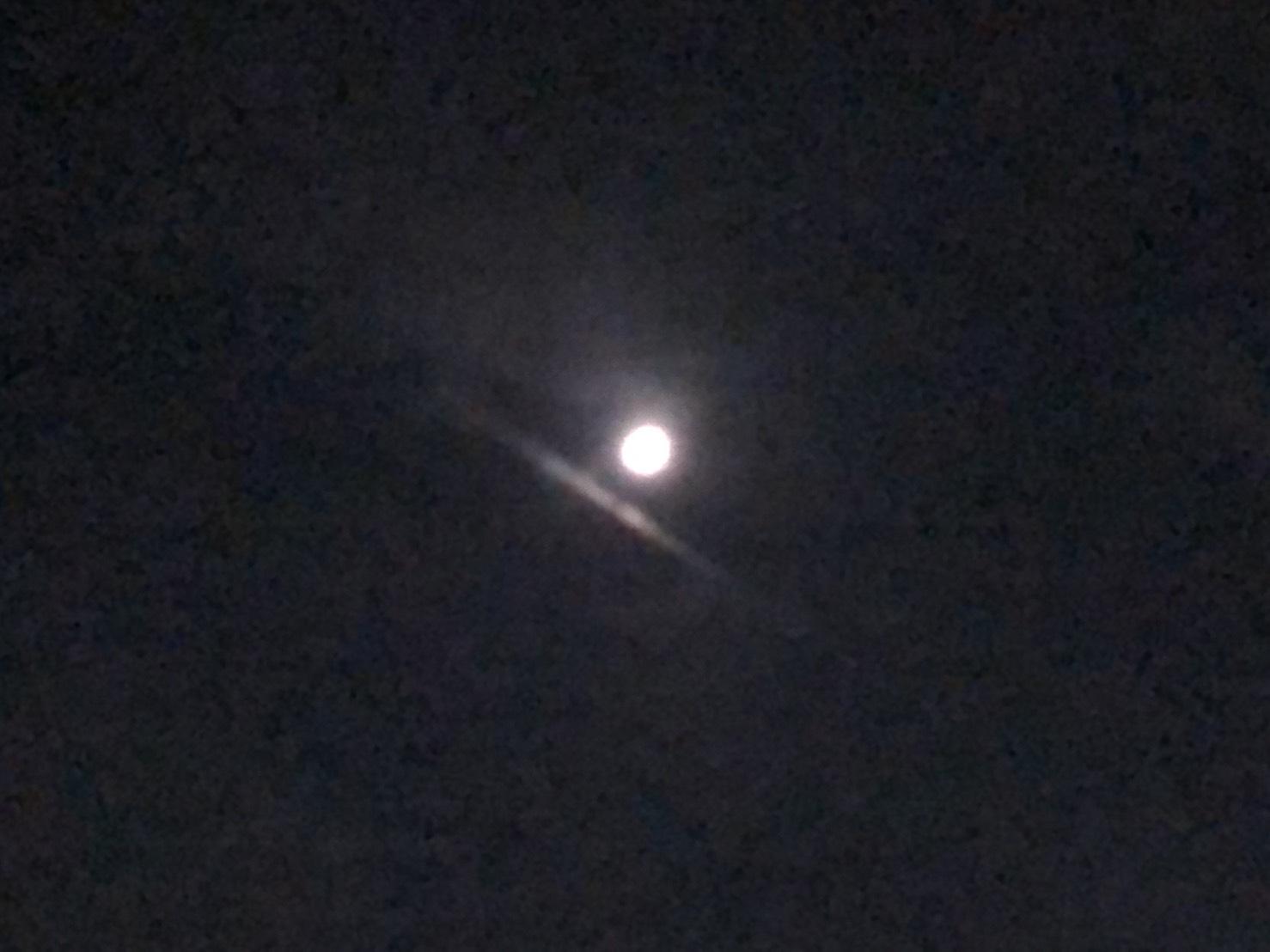 夜空を見上げたらお月様(シン・セシア)