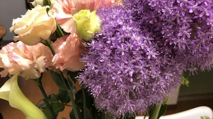 今月のお花(シン・セシア)